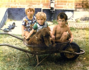 Three kids in a wheel-barrow, and don't forget the dog!